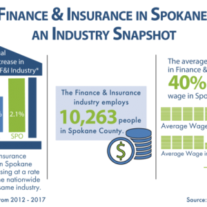 Finance and Insurance Infographic